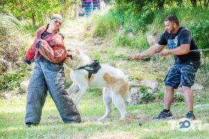 Школа Охоронних Собак АРЕС-АБРАЙ - фото 5