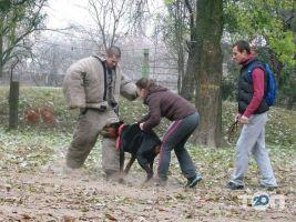 Школа Охоронних Собак АРЕС-АБРАЙ - фото 7