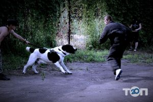 Школа Охоронних Собак АРЕС-АБРАЙ - фото 9