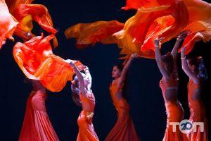Болеро, школа танцев - фото 4