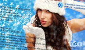 снежинка - фото 2