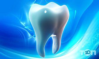 Стоматологическая поликлиника №1 - фото 2