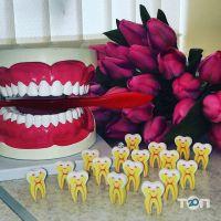 Стоматология, врача-стоматолога Дриженко А.В. - фото 4