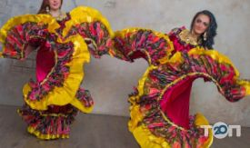 Андо Шатро, цыганский шоу-театр - фото 3