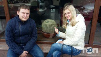 Кактус, туристическое агентство - фото 1