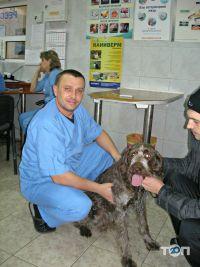 Ветеринарная клиника - фото 1