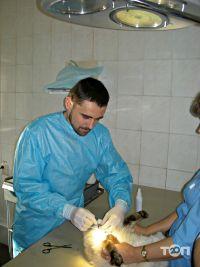 Ветеринарная клиника - фото 5