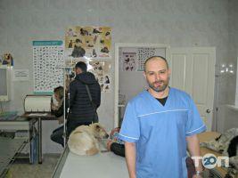 Ветеринарная клиника - фото 8