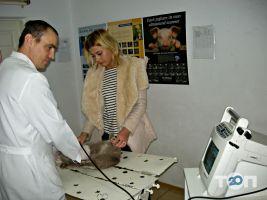 Ветеринарная клиника - фото 10