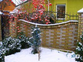Янчук Л. В., ЧП - фото 20