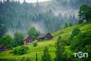 Журавель, туристическое агентство - фото 1