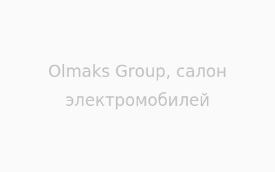 Логотип Olmaks Group, салон электромобилей г. Винница