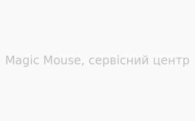 Логотип Magic Mouse г. Житомир